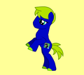 Havok pony