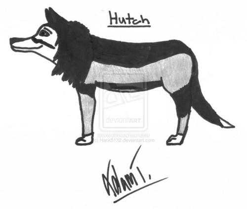 Hutch