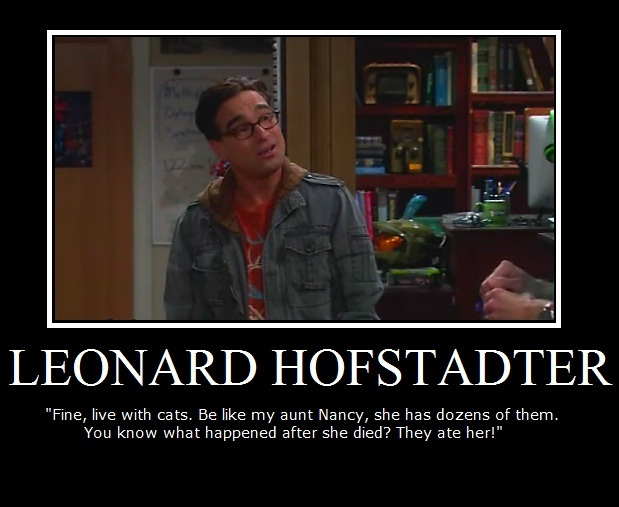 The Big Bang Theory Leonard Hofstadter :]
