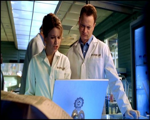 Mac / Lindsay - csi-ny Photo