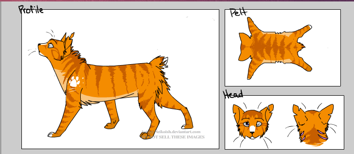 warrior cats images me wallpaper and background photos 26403341