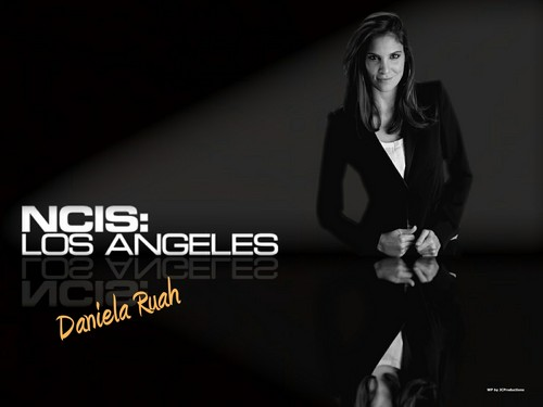 NCIS: Los Angeles 壁纸 probably with a well dressed person titled 海军罪案调查处 : Los Angeles