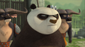 Po's Glare - kung-fu-panda photo