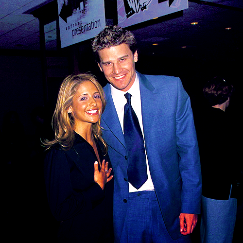 Bangel wallpaper with a business suit, a suit, and a two piece entitled Sarah Michelle Gellar & David Boreanaz
