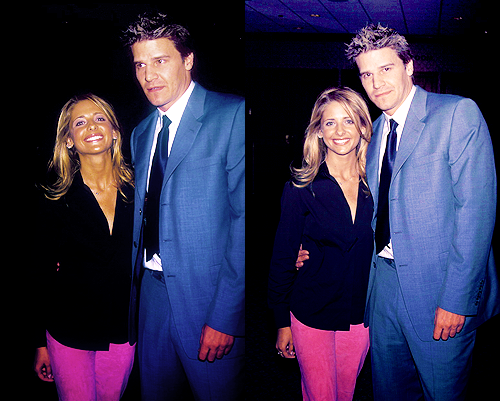 Bangel 壁紙 containing a business suit and a suit titled Sarah Michelle Gellar & David Boreanaz