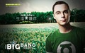 the-big-bang-theory - Sheldon wallpaper