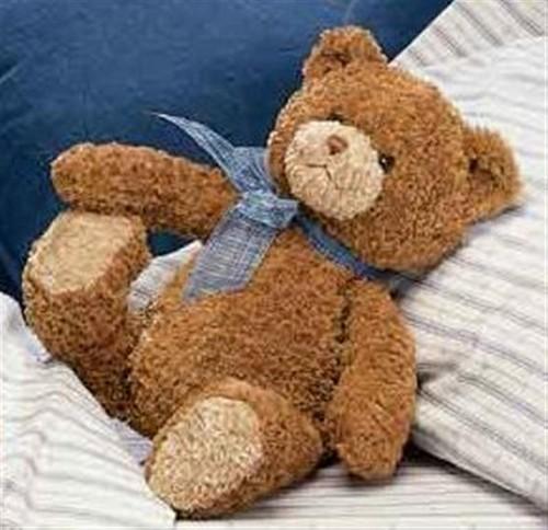 Teddy menanggung, bear