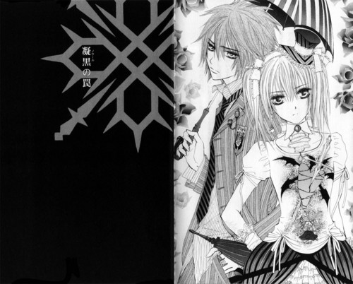 Manga Hintergrund entitled Vampire Knight