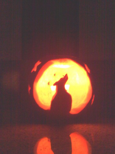 Wolf howling at the moon jack'o lantern.