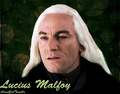 lucius malfoy wallpaper - lucius-malfoy fan art