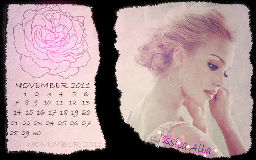 jessica alba wallpaper probably containing a sign titled november calendar