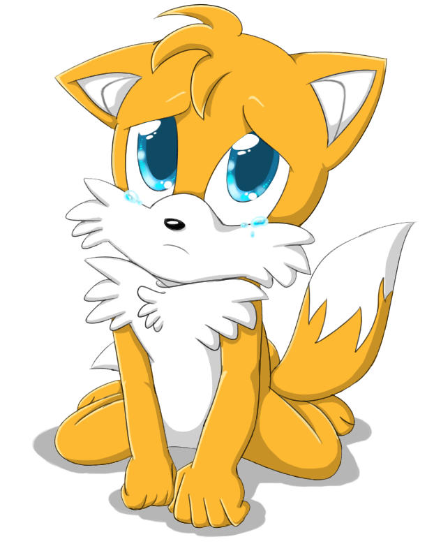 Miles Tails Prower Images Puppy Eyes Hd Wallpaper And Background