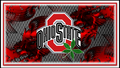red block o ohio state with buckeye leaf - ohio-state-football wallpaper