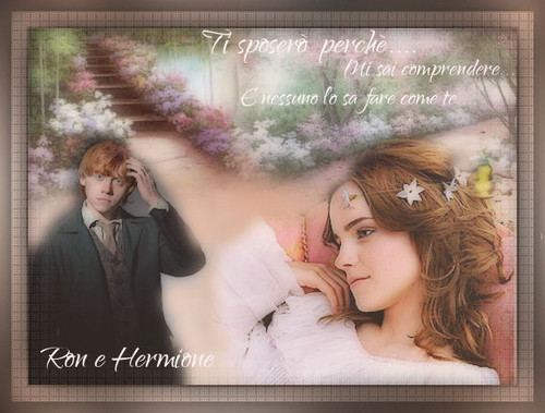 Hermione and Ron wallpaper possibly with a portrait entitled rr