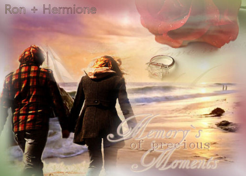 Hermione and Ron wallpaper with a sign entitled rr
