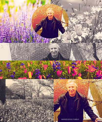 Alan in nature