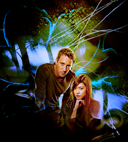 Steve and Kono wallpaper called Alex&Grace