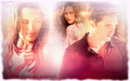 edward-and-bella - Breaking Dawn wallpaper wallpaper