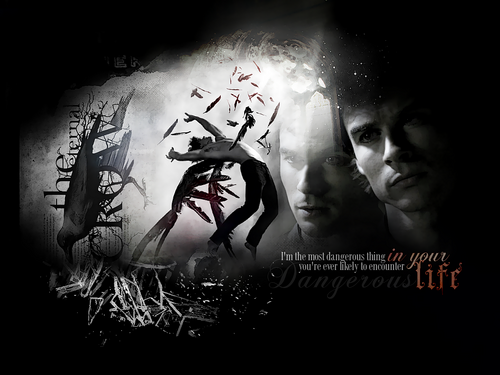 Damon Salvatore wallpaper possibly containing a sign, a concert, and anime called Damon Salvatore
