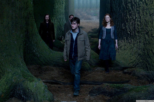 Deathly Hallows Movie Stills