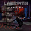Earthquake- Labrinth Ft Tinie Tempah :D