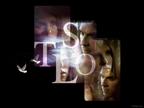 Damon & Elena wallpaper titled Elena and Damon