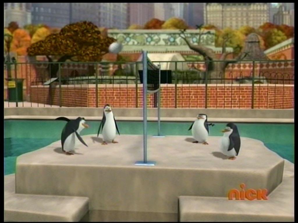 Los Pingüinos De Madagascar Imágenes How The Penguins Have Fun