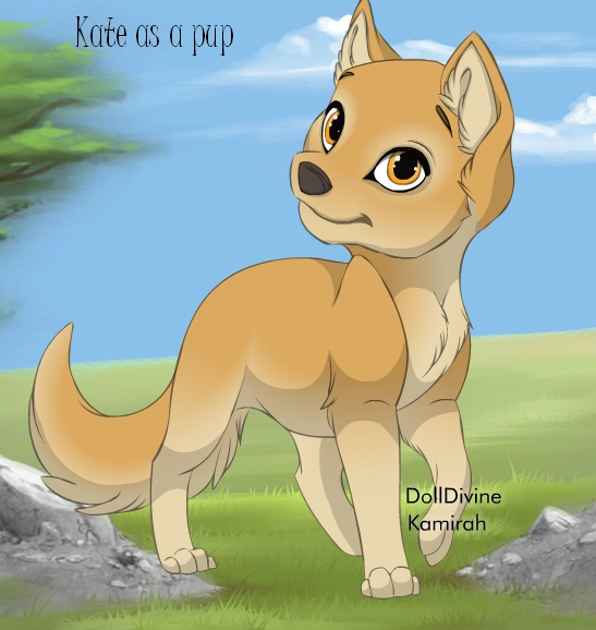 Kate as a pup