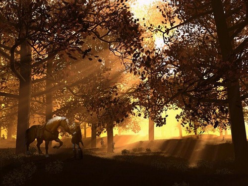 The Legend of Zelda wallpaper containing a live oak, a beech, and an olive entitled Link and Epona