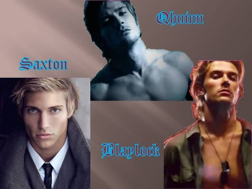 The Black Dagger Brotherhood پیپر وال with a portrait called Qhuinn, Blaylock & Saxton