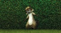 Rj Over The Hedge wallpaper.