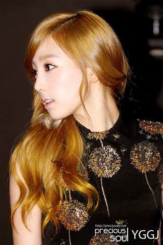 Taeyeon @ Mnet Style 아이콘 Awards 2011 Red Carpet