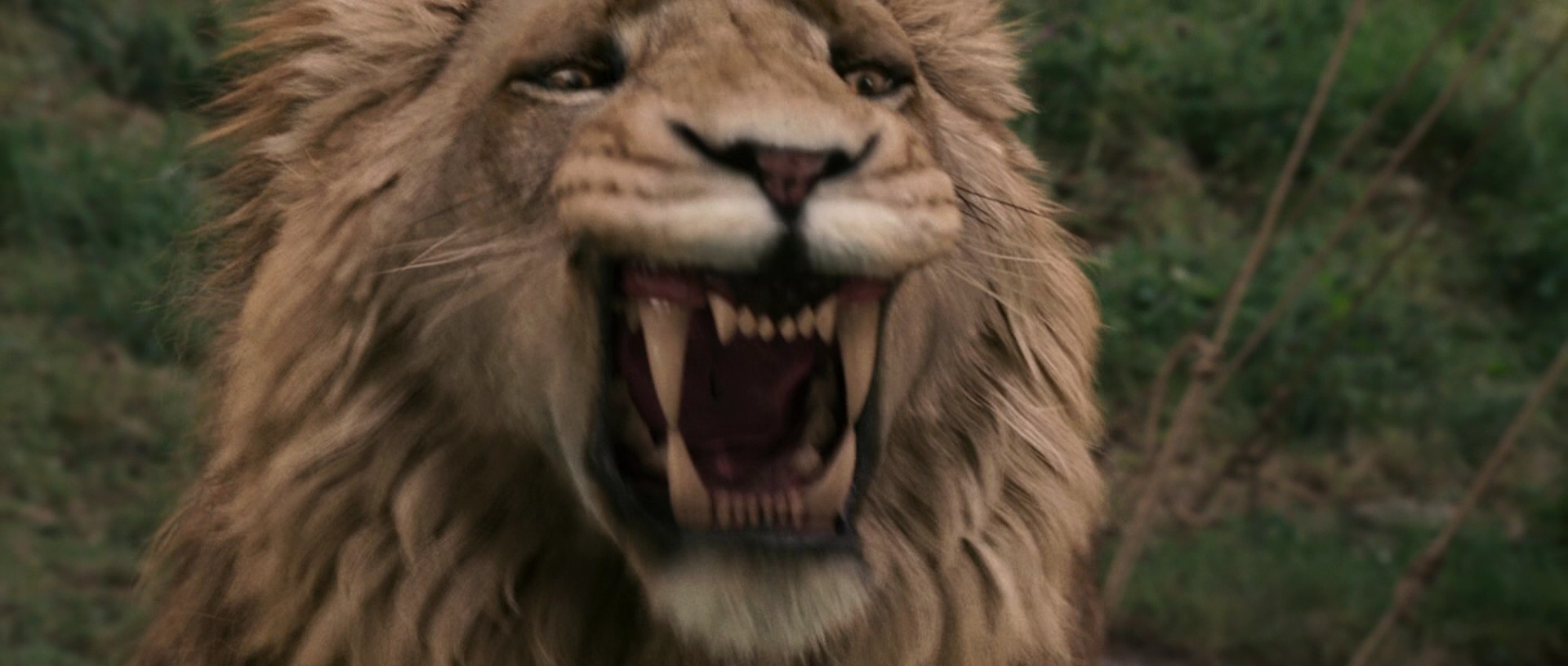 """christianity in the chronicles of narnia the lion the witch and the wardrobe by c s lewis The witchcraft of the narnia chronicles  of narnia the lion, the witch, and the wardrobe it is a sad fact that mainstream """"christianity"""" esteems cs lewis."""