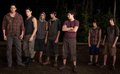 The Twilight Saga: Breaking Dawn - Part 1 Breaking Dawn Stills - the-quileute-wolf-pack photo