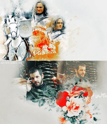 왕좌의 게임 바탕화면 containing a bouquet called Loras & Renly