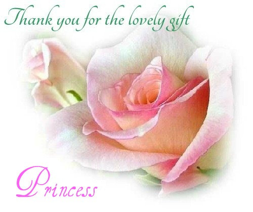 ~Thank you Princess ~