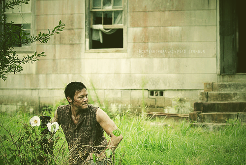 ☆ The Walking Dead 2x04 ☆