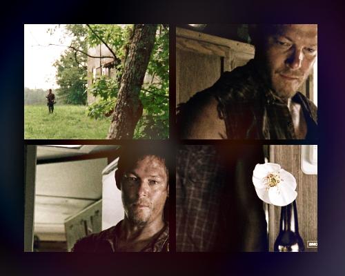☆ The Walking Dead 2x04 ☆
