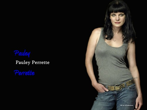 Navy CIS Hintergrund titled Abby Sciuto aka Pauley Perrette