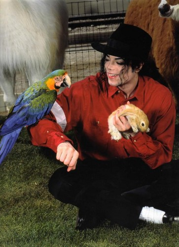 He loves animals