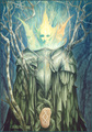 Arrival [the Runes of Elfland] - brian-froud photo