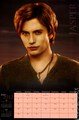 Breaking Dawn calendar scans