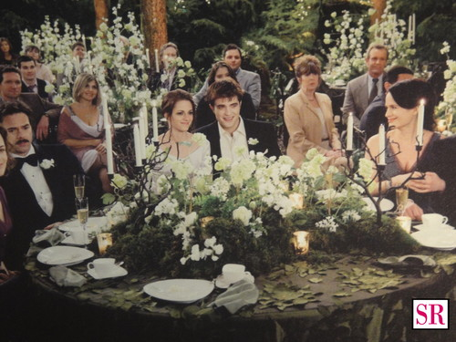 Breaking Dawn wedding stills