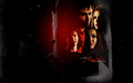 Elena and Damon - damon-and-elena wallpaper