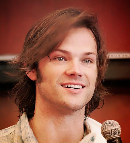 Jared P.