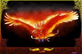 Phoenix the bird
