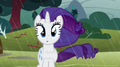 rarity-the-unicorn - Rarity screencap