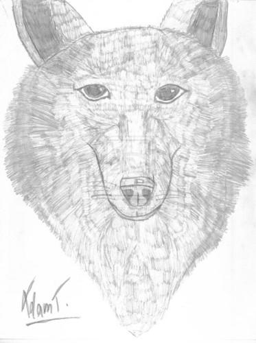 भेड़िया 2
