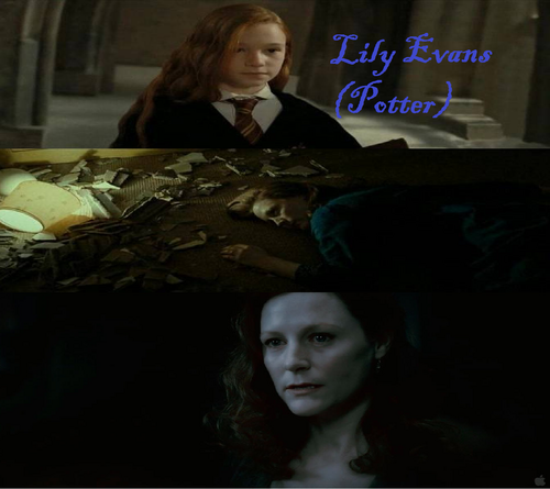 lily evans (Potter)