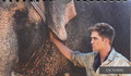 new WFE stills magazine scans - water-for-elephants photo